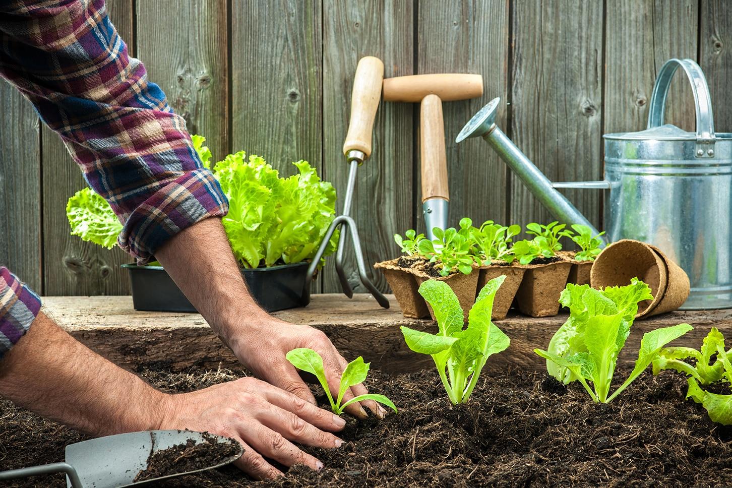 Cultivez votre bien-être